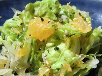 Cabbage Amanatsu Salad (1).jpg