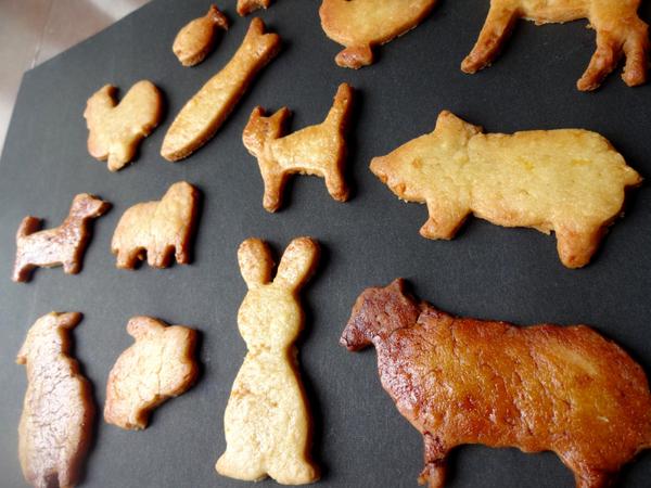 Animal Cookies 2017Jul26 MB (2)_00001.jpg