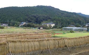 Moroyama Aki Tenpiboshi  720 x 480.jpg
