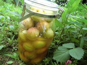 Ume Juice in Jar (1).jpg